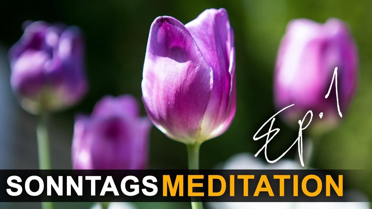 Meditations-Sonntag_EP1